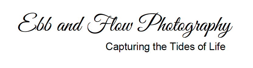 Ebb and Flow Photography